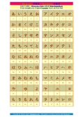 The hiragana and katakana characters.