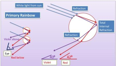 How is a rainbow formed: primary rainbow formation, white light refracts twice and internally reflected once i a raindrop, making a 2 degree difference in the violet and red components of light. Photo Credit: mdashf.org