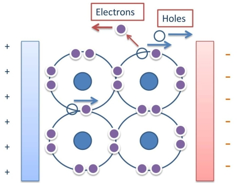 Holes and electrons move under the influence of applied potential: a. Holes will move to right towards the - ve potential b. Electrons will move to left towards + ve potential.