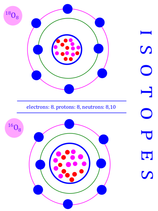 Two stable isotopes of oxygen: this image explains what are isotopes. It describes isotopes by example of oxygen, whose two stable isotopes have different neutron numbers. Photo Credit: mdashf.org